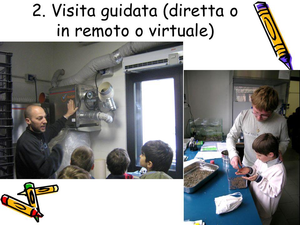 2. Visita guidata (diretta o in remoto o virtuale)