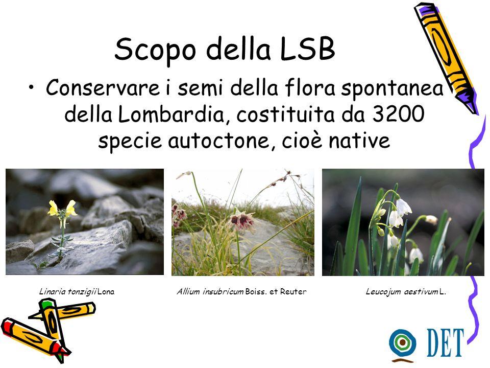 Scopo della LSB Conservare i semi della flora spontanea della Lombardia, costituita da 3200 specie autoctone, cioè native.