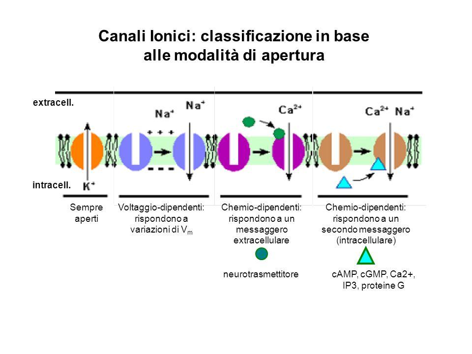 Canali Ionici: classificazione in base alle modalità di apertura