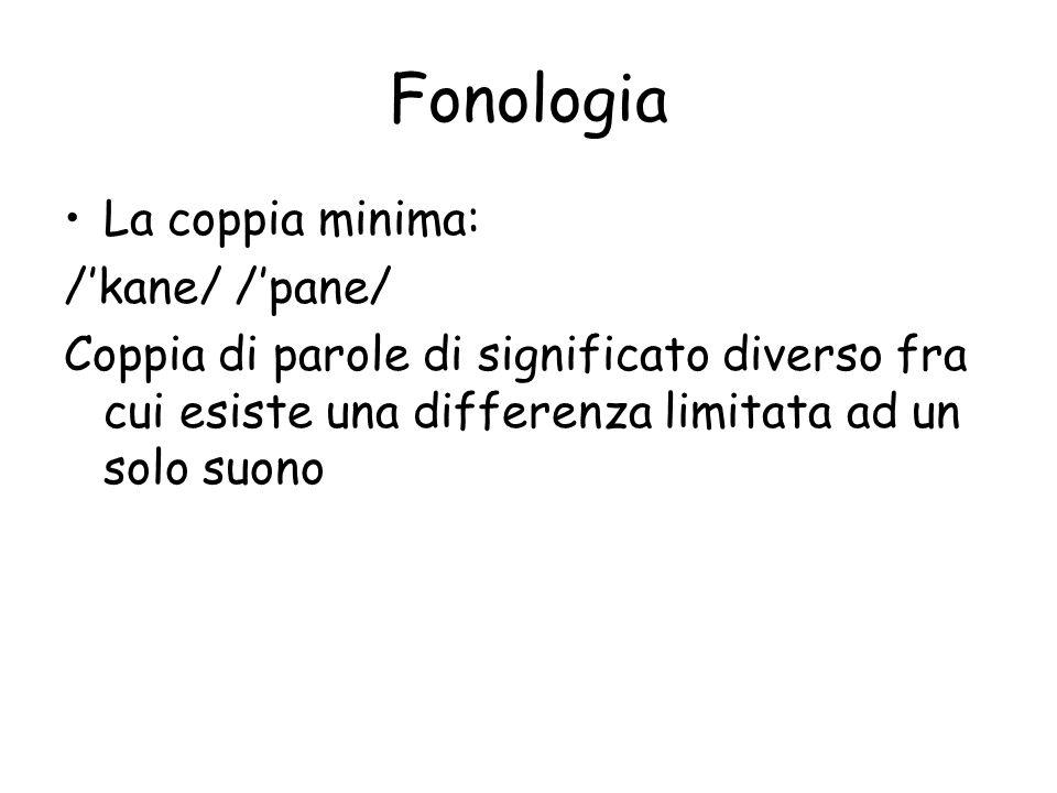 Fonologia La coppia minima: /'kane/ /'pane/