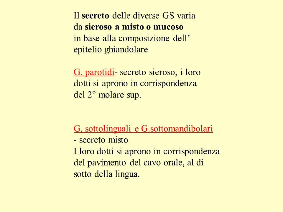 Il secreto delle diverse GS varia