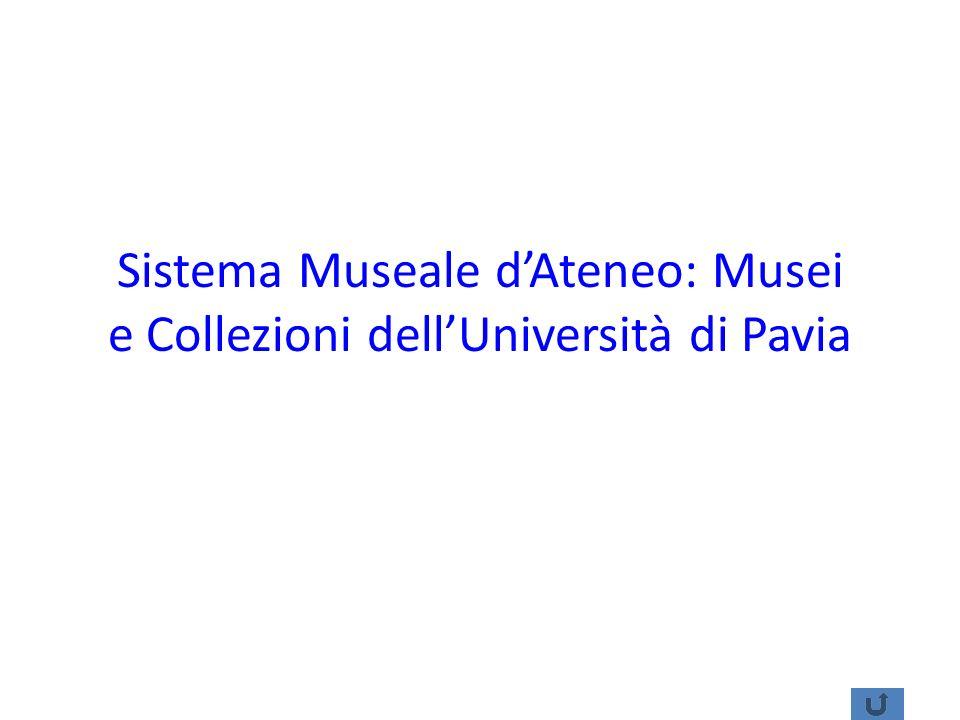 Sistema Museale d'Ateneo: Musei e Collezioni dell'Università di Pavia