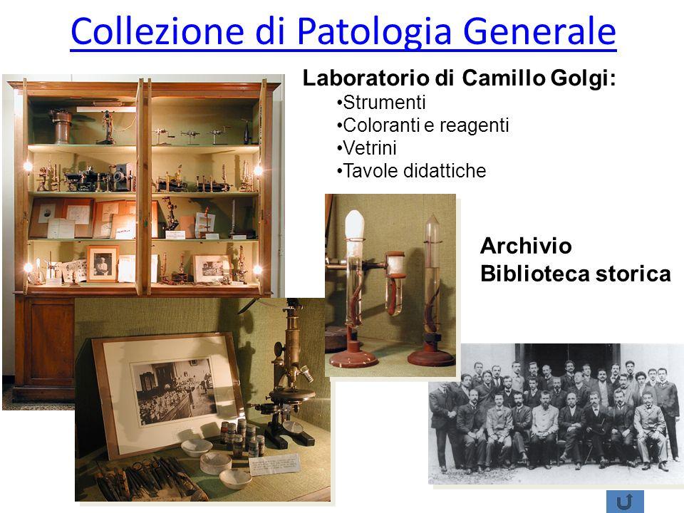 Collezione di Patologia Generale
