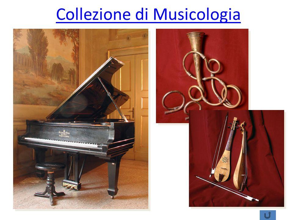 Collezione di Musicologia