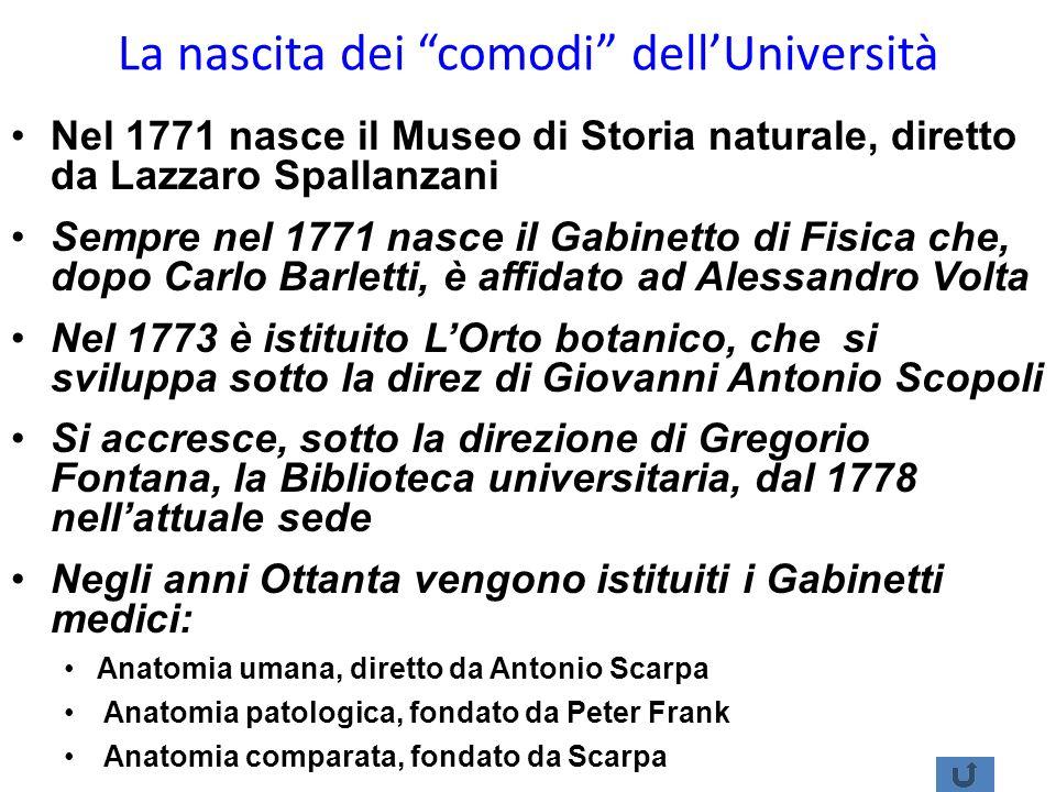 La nascita dei comodi dell'Università