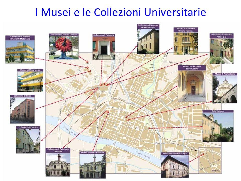 I Musei e le Collezioni Universitarie
