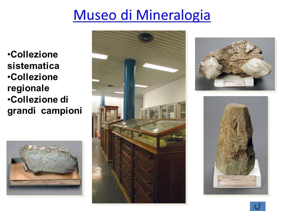 Museo di Mineralogia Collezione sistematica Collezione regionale