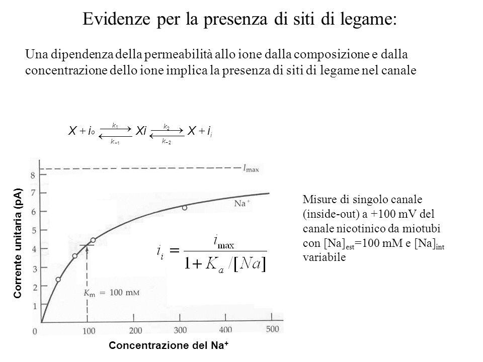 Corrente unitaria (pA) Concentrazione del Na+