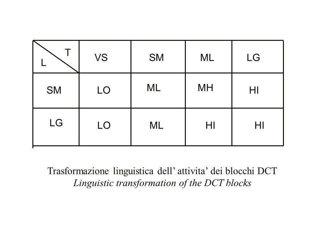 Trasformazione linguistica dell' attivita' dei blocchi DCT
