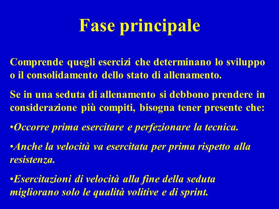 Fase principale Comprende quegli esercizi che determinano lo sviluppo o il consolidamento dello stato di allenamento.