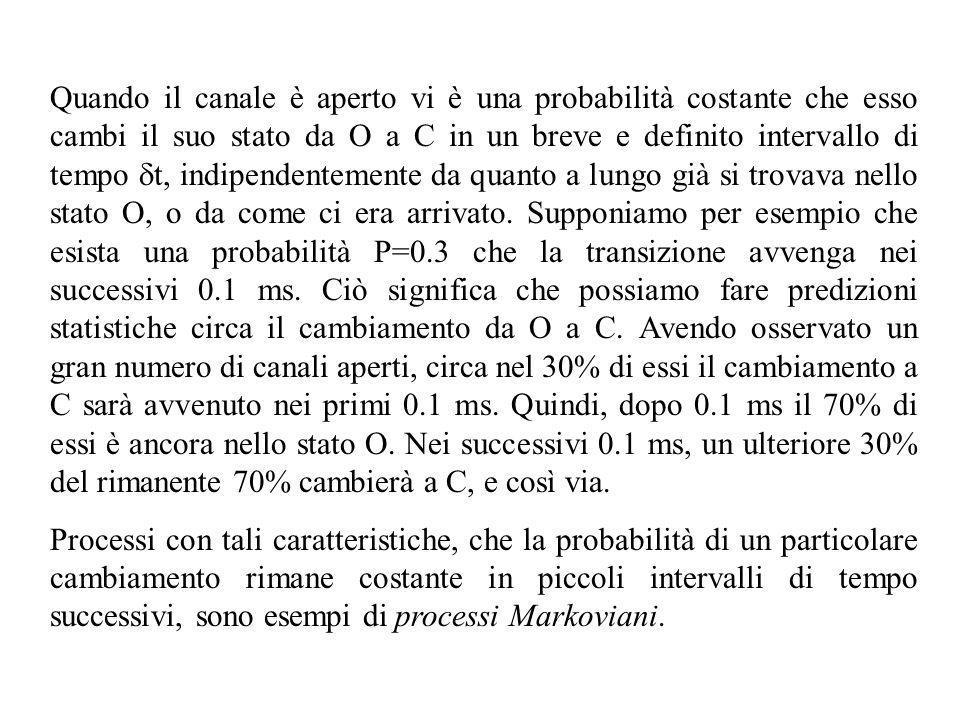 Quando il canale è aperto vi è una probabilità costante che esso cambi il suo stato da O a C in un breve e definito intervallo di tempo dt, indipendentemente da quanto a lungo già si trovava nello stato O, o da come ci era arrivato. Supponiamo per esempio che esista una probabilità P=0.3 che la transizione avvenga nei successivi 0.1 ms. Ciò significa che possiamo fare predizioni statistiche circa il cambiamento da O a C. Avendo osservato un gran numero di canali aperti, circa nel 30% di essi il cambiamento a C sarà avvenuto nei primi 0.1 ms. Quindi, dopo 0.1 ms il 70% di essi è ancora nello stato O. Nei successivi 0.1 ms, un ulteriore 30% del rimanente 70% cambierà a C, e così via.