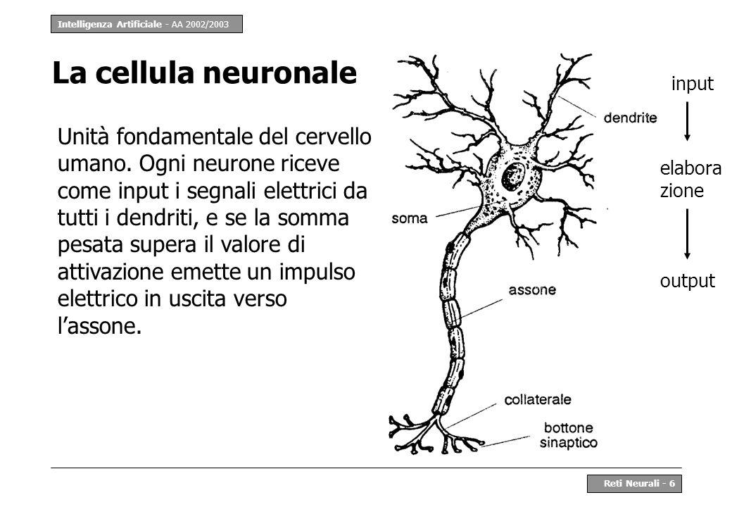 La cellula neuronale input.