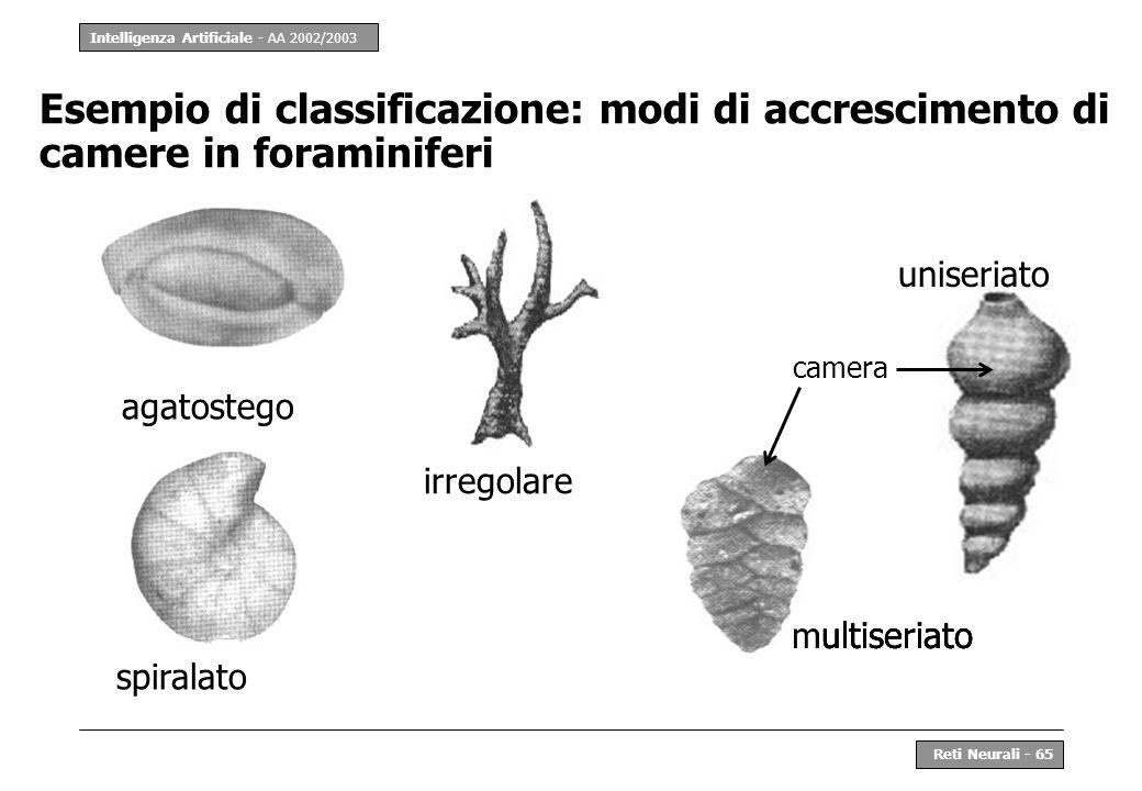 Esempio di classificazione: modi di accrescimento di camere in foraminiferi