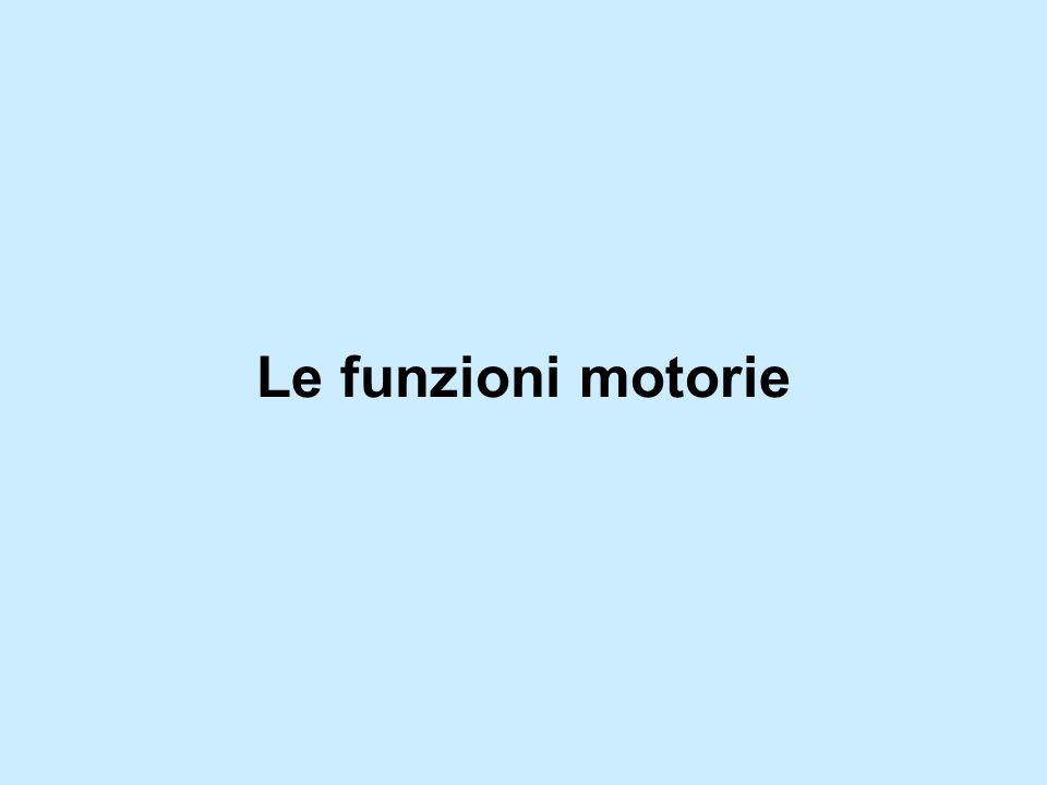 Le funzioni motorie