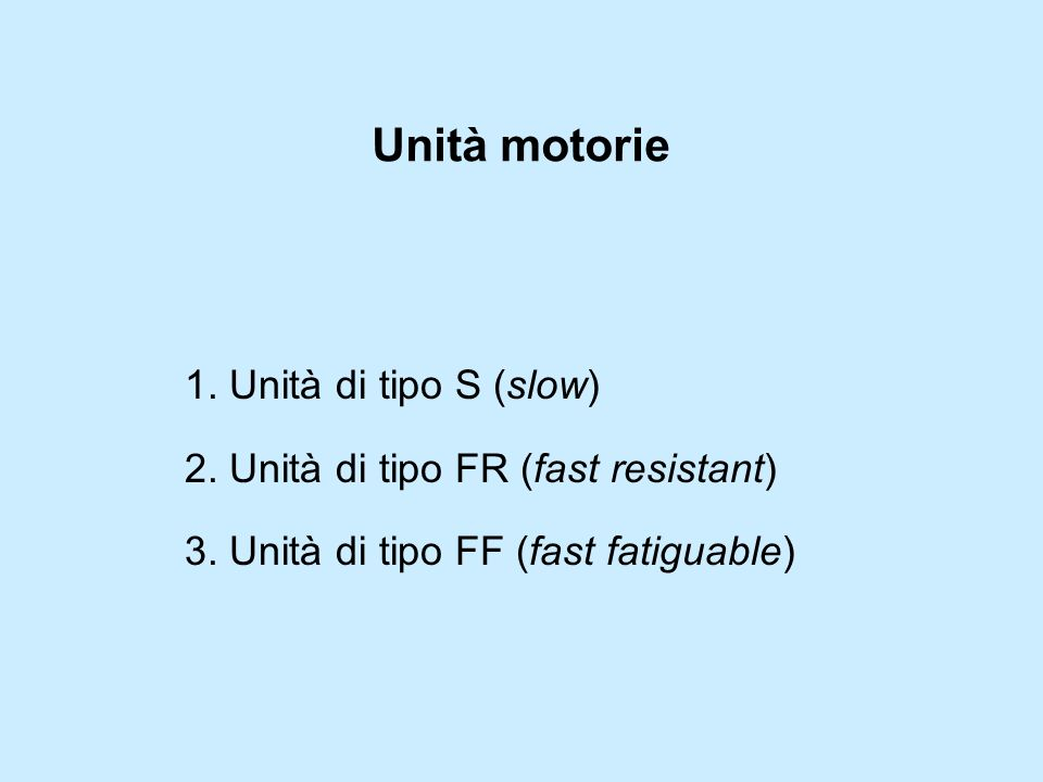Unità motorie 1. Unità di tipo S (slow)