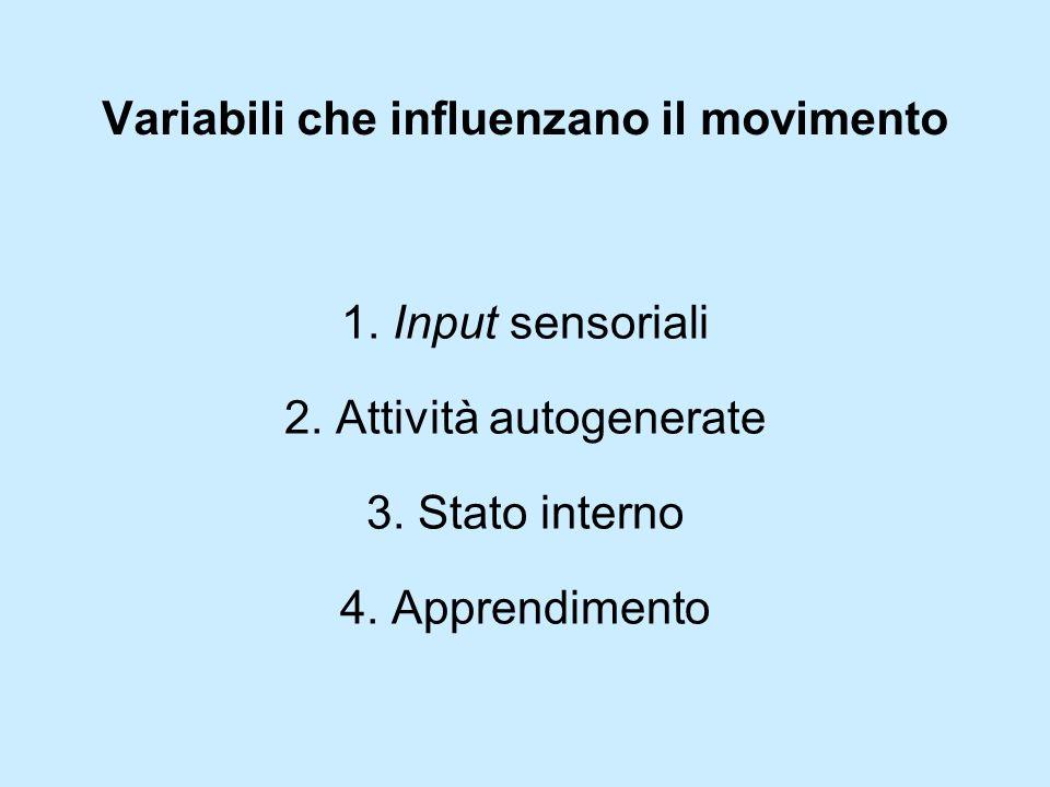 Variabili che influenzano il movimento
