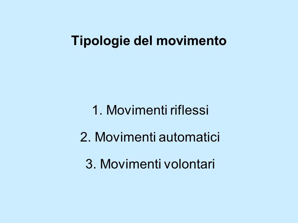 Tipologie del movimento