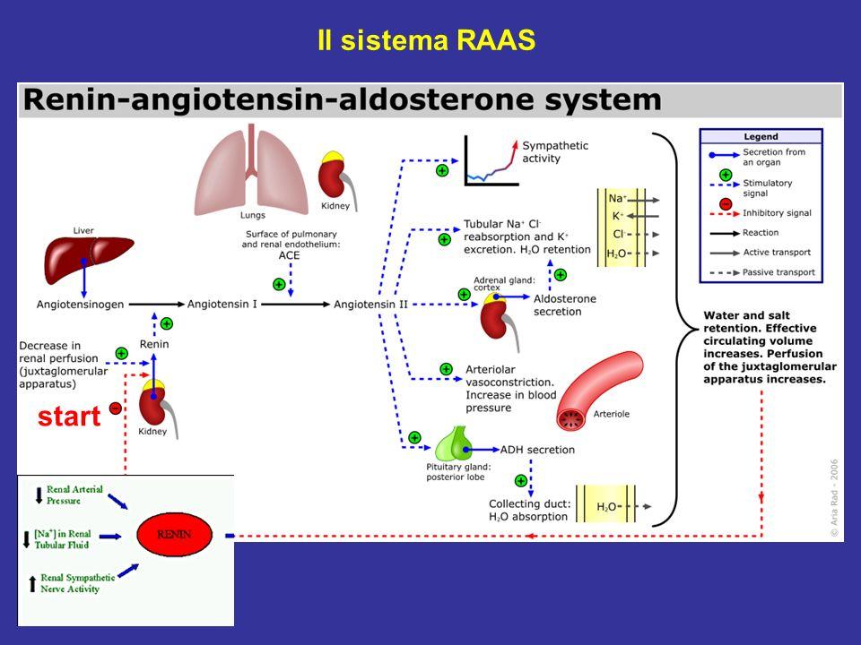 Il sistema RAAS start