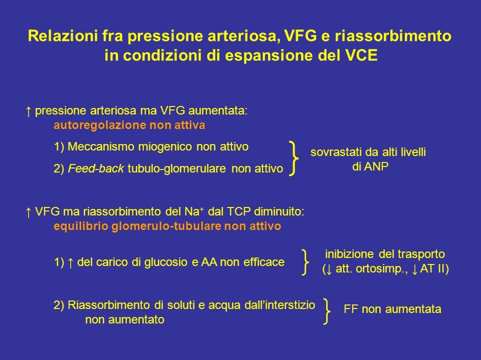 } } } Relazioni fra pressione arteriosa, VFG e riassorbimento
