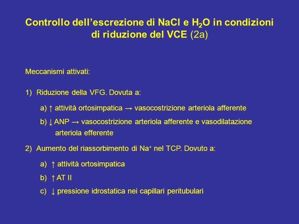 Controllo dell'escrezione di NaCl e H2O in condizioni