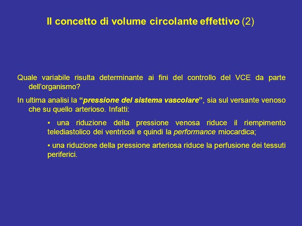 Il concetto di volume circolante effettivo (2)