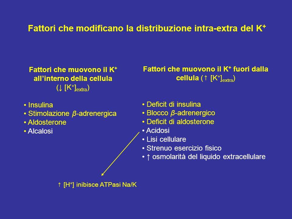 Fattori che modificano la distribuzione intra-extra del K+