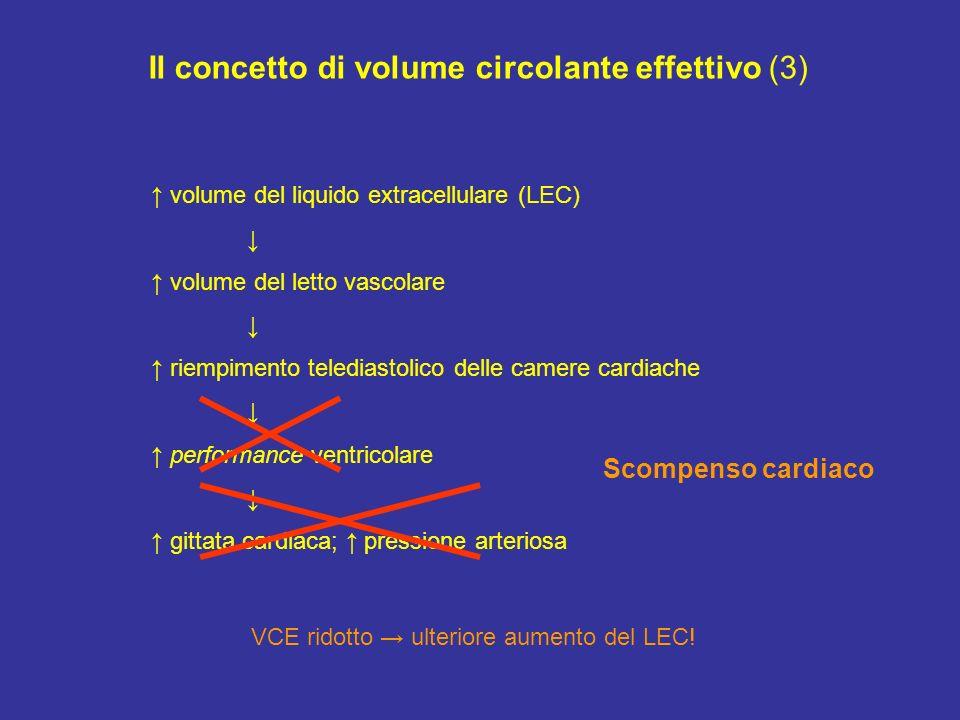 Il concetto di volume circolante effettivo (3)
