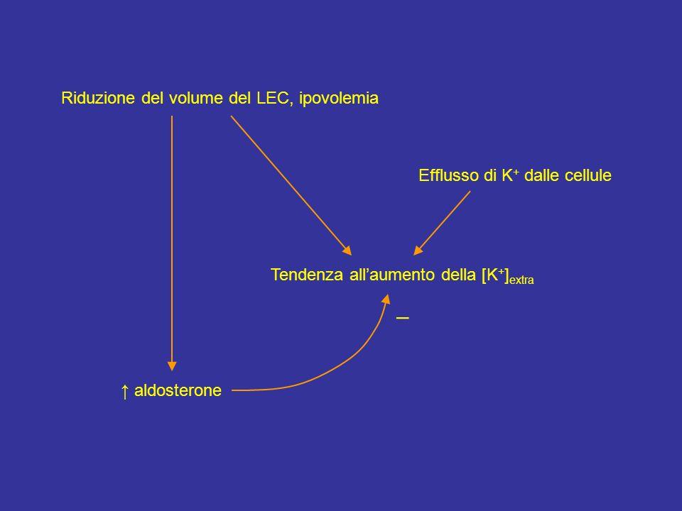– Riduzione del volume del LEC, ipovolemia