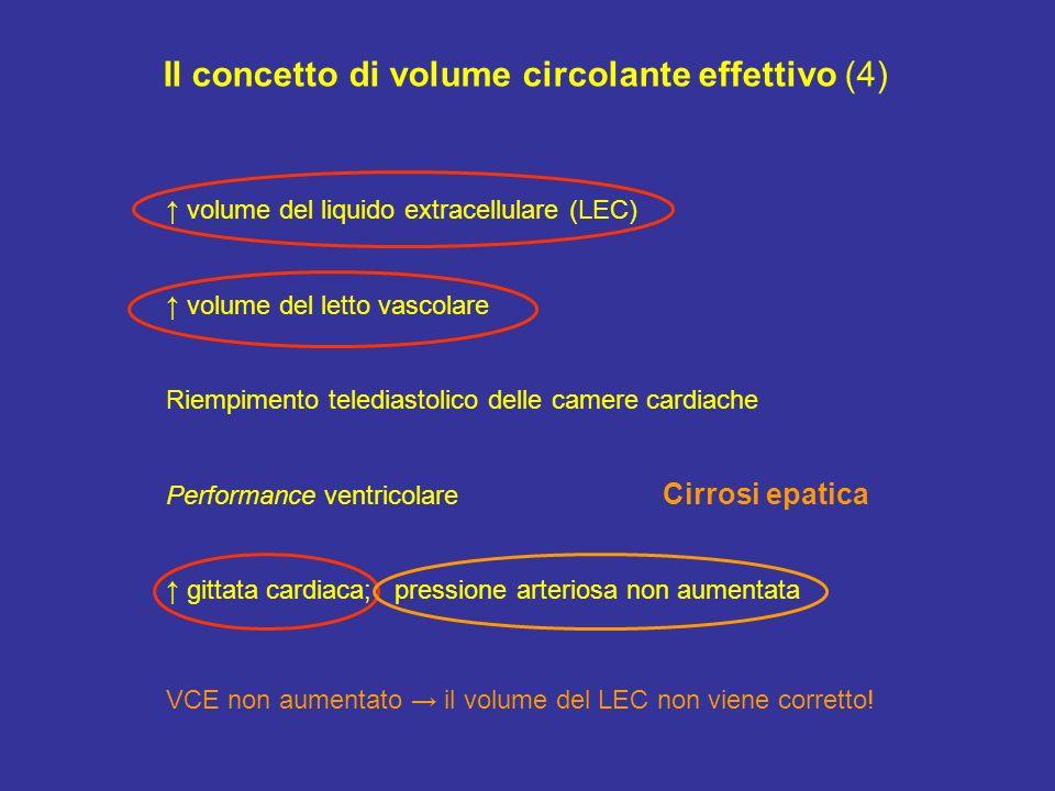 Il concetto di volume circolante effettivo (4)