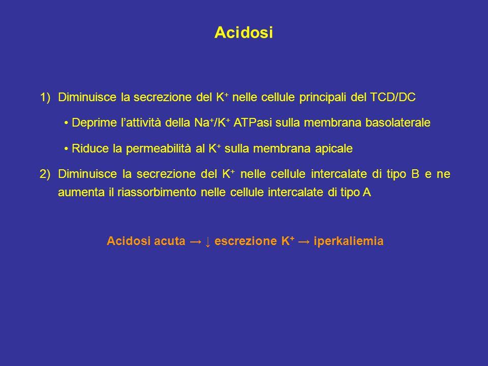 Acidosi acuta → ↓ escrezione K+ → iperkaliemia