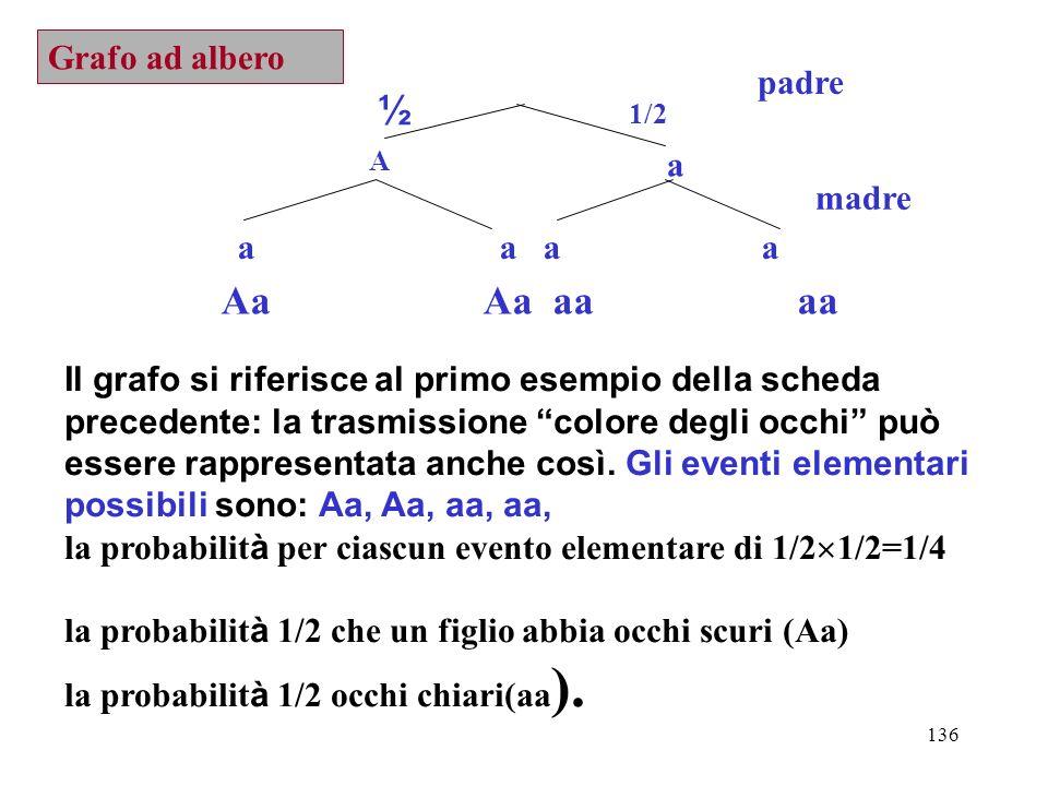 ½ 1/2 Aa Aa aa aa Grafo ad albero padre a madre a a a a