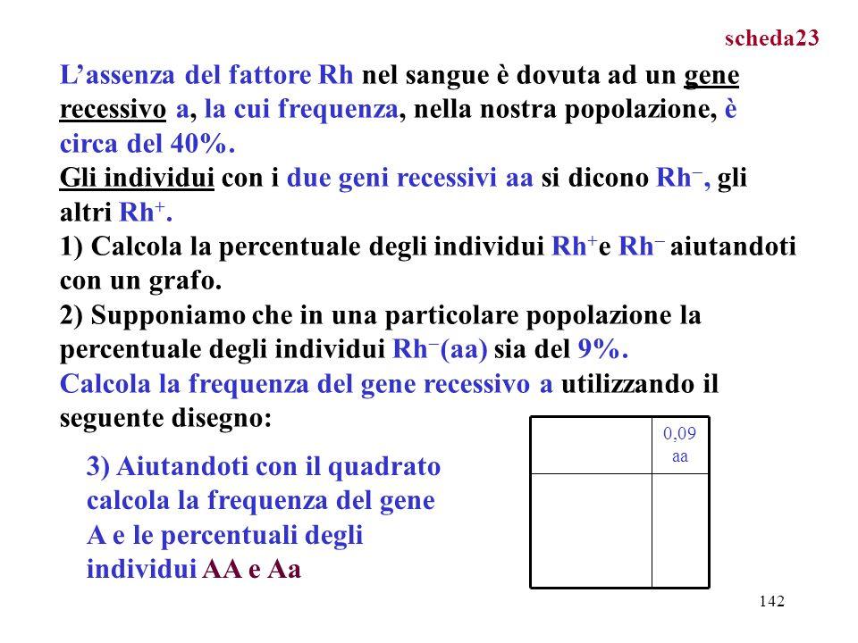 scheda23 L'assenza del fattore Rh nel sangue è dovuta ad un gene recessivo a, la cui frequenza, nella nostra popolazione, è circa del 40%.