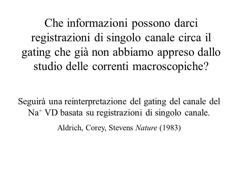 Aldrich, Corey, Stevens Nature (1983)