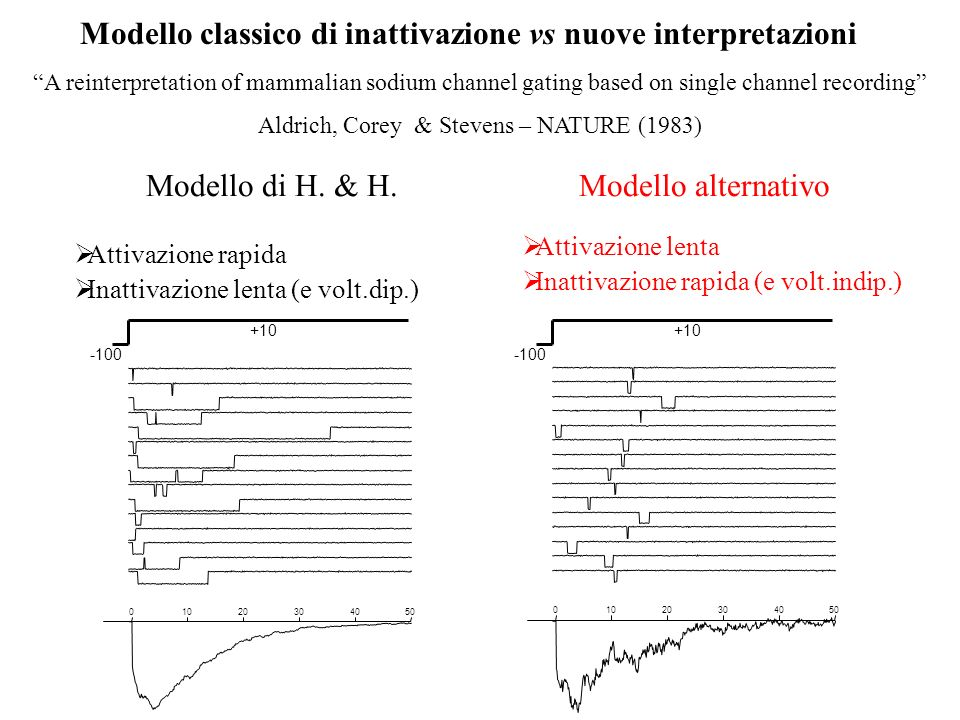 Modello classico di inattivazione vs nuove interpretazioni