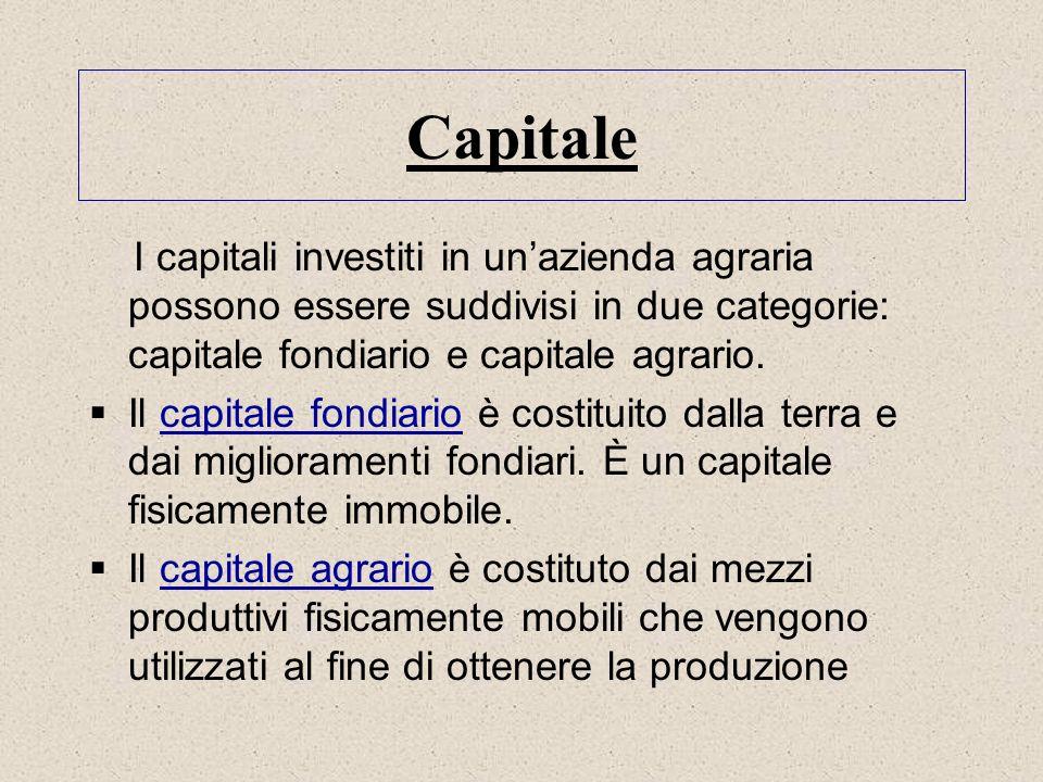 Capitale I capitali investiti in un'azienda agraria possono essere suddivisi in due categorie: capitale fondiario e capitale agrario.