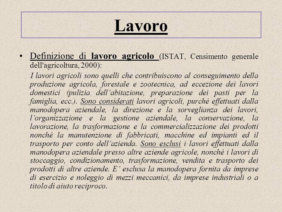 Lavoro Definizione di lavoro agricolo (ISTAT, Censimento generale dell agricoltura, 2000):