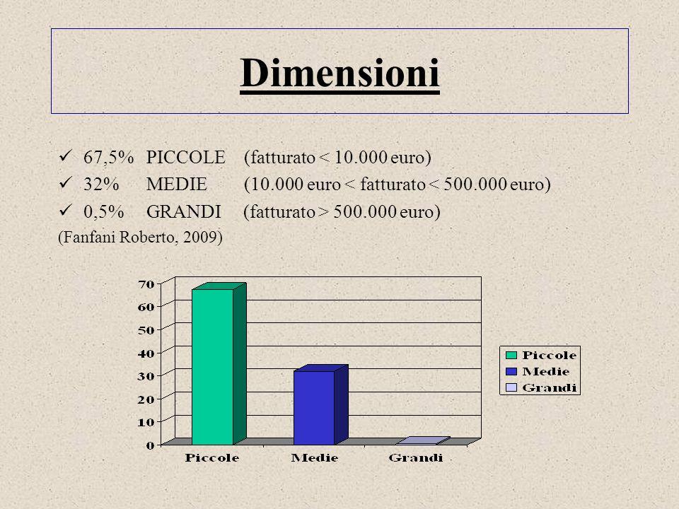 Dimensioni 67,5% PICCOLE (fatturato < 10.000 euro)