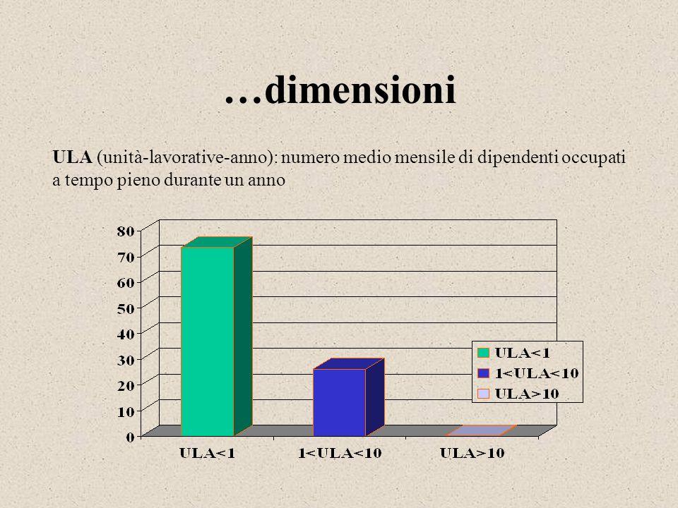 …dimensioni ULA (unità-lavorative-anno): numero medio mensile di dipendenti occupati a tempo pieno durante un anno.