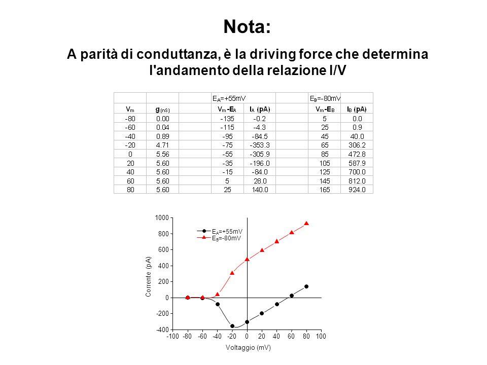 Nota: A parità di conduttanza, è la driving force che determina l andamento della relazione I/V. -100.