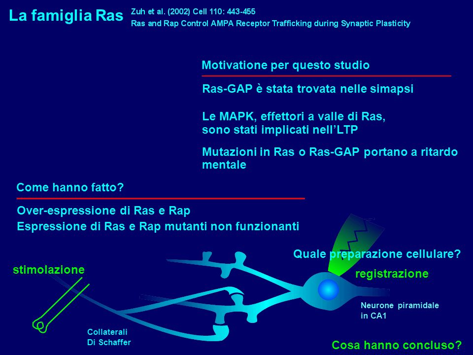 La famiglia Ras Motivatione per questo studio