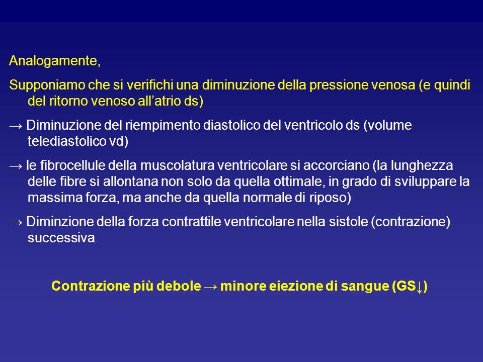 Contrazione più debole → minore eiezione di sangue (GS↓)