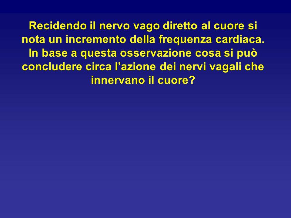 Recidendo il nervo vago diretto al cuore si nota un incremento della frequenza cardiaca.
