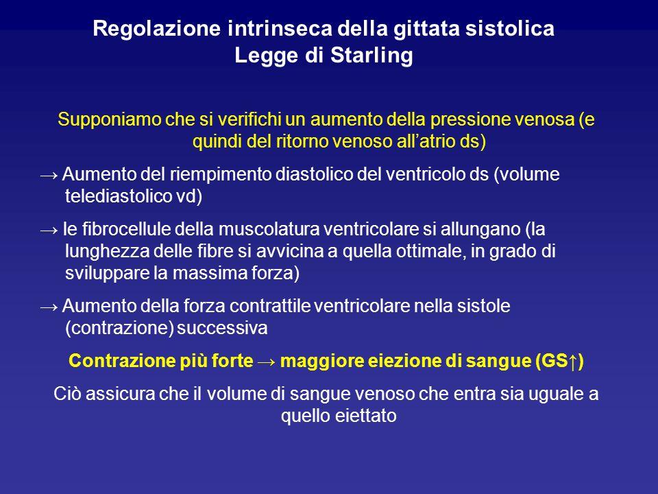 Regolazione intrinseca della gittata sistolica Legge di Starling