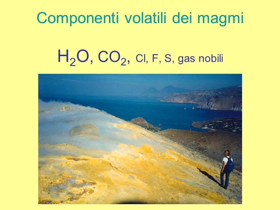 Componenti volatili dei magmi H2O, CO2, Cl, F, S, gas nobili
