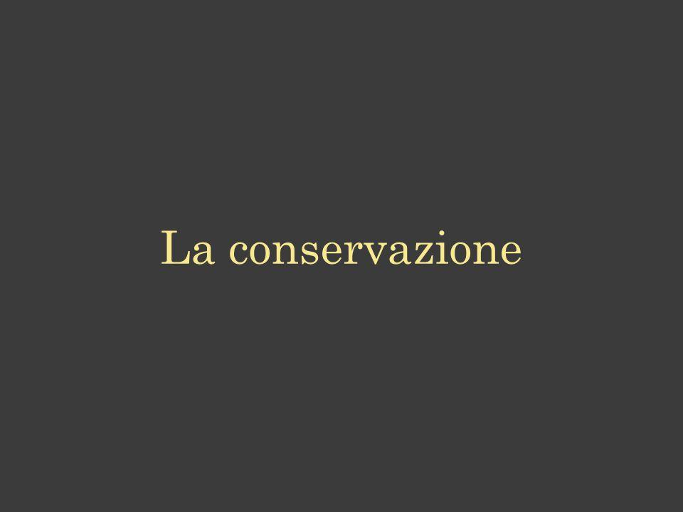 La conservazione