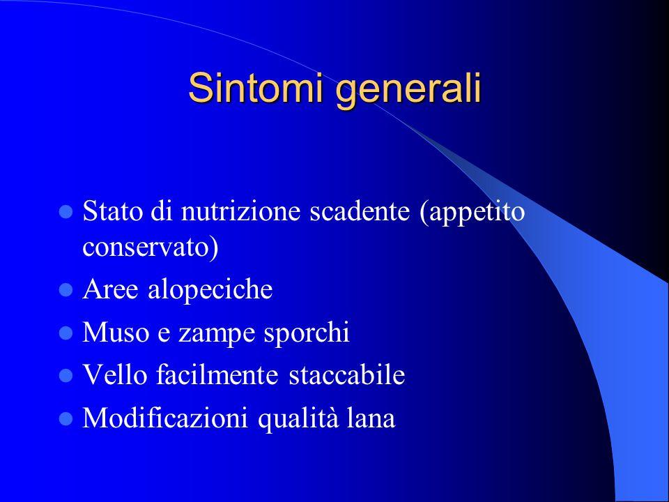 Sintomi generali Stato di nutrizione scadente (appetito conservato)
