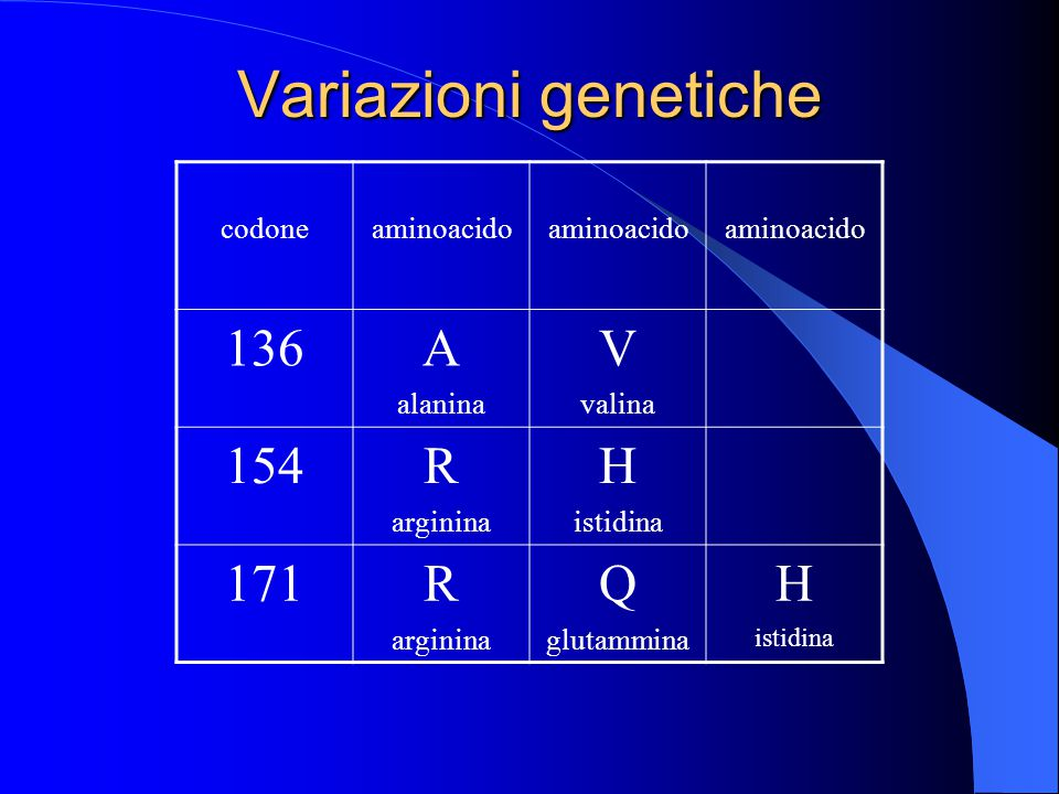 Variazioni genetiche 136 A V 154 R H 171 Q codone aminoacido alanina