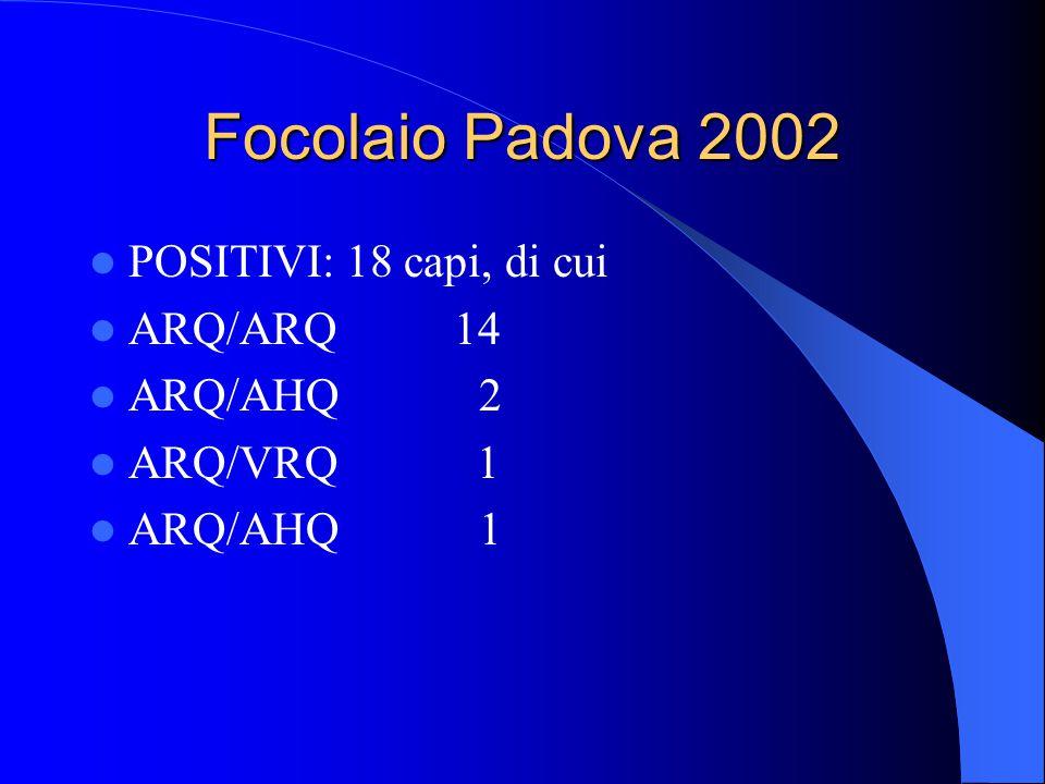 Focolaio Padova 2002 POSITIVI: 18 capi, di cui ARQ/ARQ 14 ARQ/AHQ 2