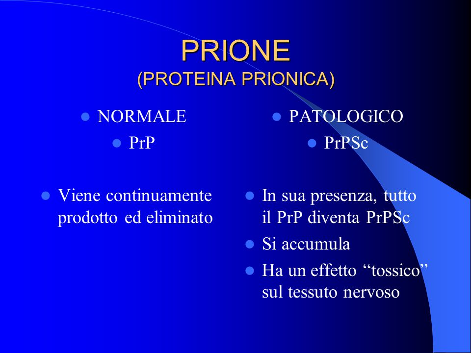 PRIONE (PROTEINA PRIONICA)