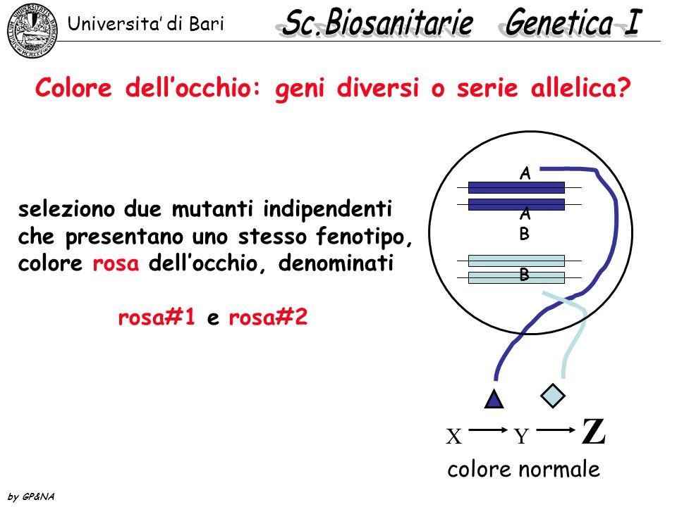Colore dell'occhio: geni diversi o serie allelica